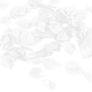 Rosenblad vita