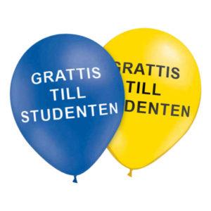 Ballonger Studenten - 50-pack