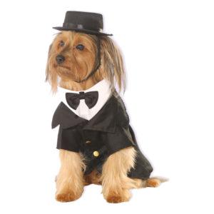 Kostym Hund Maskeraddräkt - X-Large