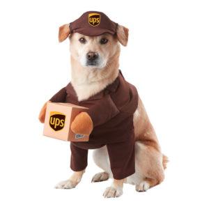 UPS Hund Maskeraddräkt - Medium