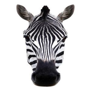 Zebra Pappmask