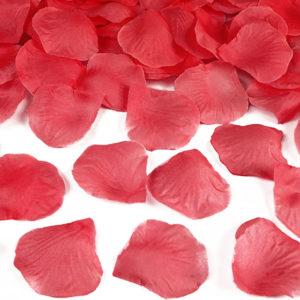 Röda Rosenblad Konfetti