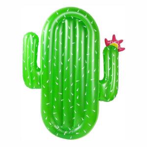 Badmadrass Kaktus