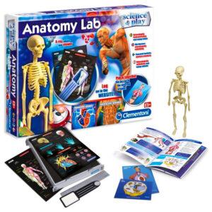 Anatomy Lab Människokroppen Spel