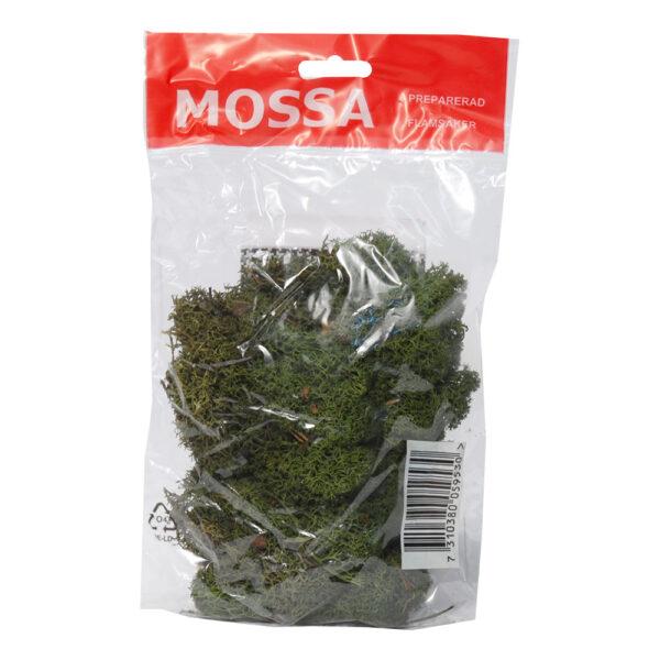 Mossa Grön - 40 gram