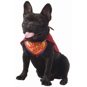 Hunddräkt Superman