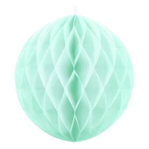 Honeycomb Mint - 10 cm
