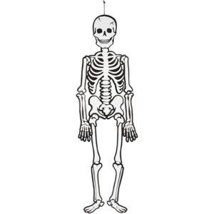 Halloween Skelett (Självlysande)